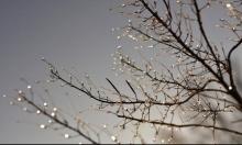 حالة الطقس: أجواء غائمة وأمطار متفرقة