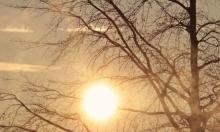 حالة الطقس: أجواء ربيعية لطيفة