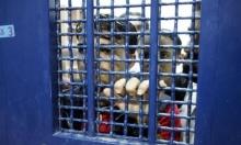 تعليق الزيارات العائلية للأسرى في سجون الاحتلال