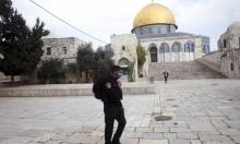 الصحة الإسرائيلية: ارتفاع الإصابات بكورونا إلى 705 بينها 10 خطيرة