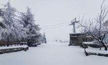 شاهد | الثلوج تتساقط على جبل الشيخ