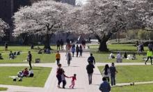 الجامعات الغربية قد تخسر أكبر مموليها.. الطلاب الصينيين