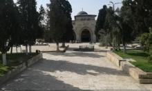 بسبب كورونا: الاحتلال يمنع اقتحامات المستوطنين للأقصى