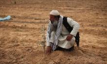 إسرائيل ترش مبيدات كيماوية على الأراضي الزراعية الحدودية بغزة