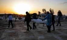 73 حالة وفاة بكورونا في البلاد و9519 إصابة