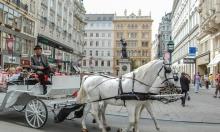 النمسا: عربات الخيول السياحيّة توزّع طرودًا غذائية للمسنين