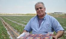 فيروس كورونا يصيب الزراعة العربية ويكبدها خسائر فادحة