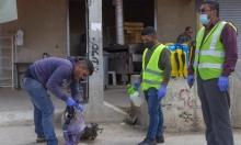 الصحة الفلسطينية: لا إصابات جديدة بكورونا والحصيلة 495