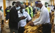 الأمم المتحدة تتوقع فقدان 1.6 مليار عامل لوظائفهم