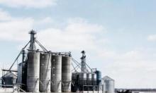 أسعار النفط ترتفع متأثرة بقرارات تخفيف إجراءات العزل