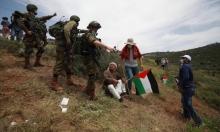 إصابة العشرات بمواجهات مع الاحتلال في الضفة الغربية