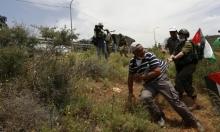 الاحتلال يستهدف منشآت في سبسطية ويدمر أراض زراعية بطولكرم