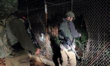 الجيش الإسرائيلي يعتقل طالبي لجوء عبرا الحدود من لبنان