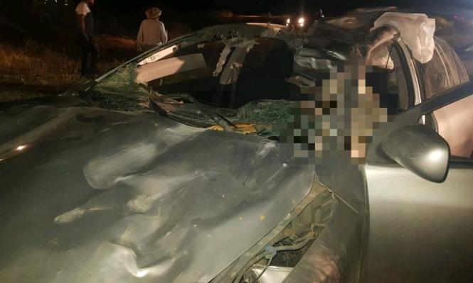 النقب: مصرع شاب في حادث اصطدام سيارة بجمل