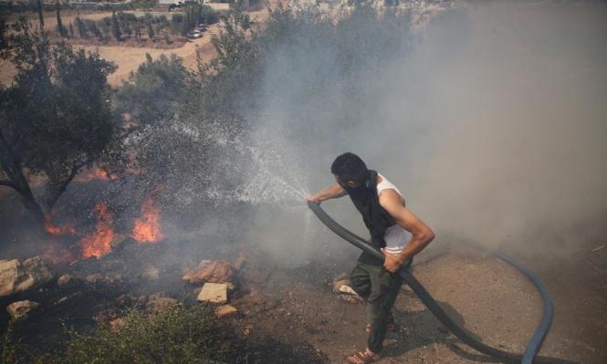 مستوطنون يحرقون مزروعات بنابلس والنيران تشتعل بمئات الدونمات بالأغوار