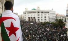الجزائر تقر بناء مولدات طاقة شمسيّة بتكلفة 3 مليارات