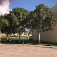 كورونا في عرعرة النقب: إصابة معلمة وإحالة معلمين وطلاب للحجر الصحي