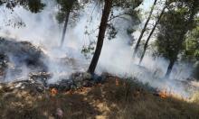 حريق يلتهم أراض حرشية قرب جديدة المكر