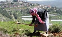 مستوطنون يعتدون على 3 فلسطينيين والاحتلال يقتحم منطقة المسعودية