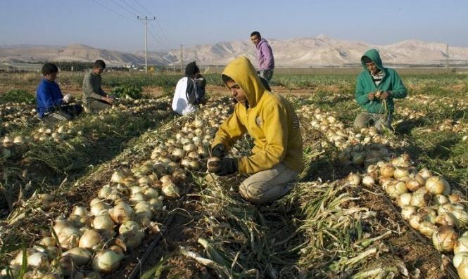 القطاع الزراعي في المنظمات الأهلية يحذّر من مخاطر الضم