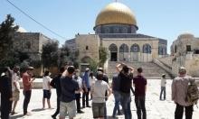 غليك يتقدم اقتحامات المستوطنين للأقصى والاحتلال يحجبه عن الفلسطينيين
