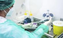 دراسة: طفرة جينية في فيروس كورونا حفزت انتشاره