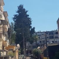 حيفا: حي الحليصة في مهب العنف والجريمة