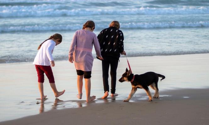 شرطة حماس تمنع تواجد الكلاب في الأماكن العامة