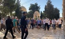 """مستوطنون يقتحمون الأقصى ودعوات للاعتصام عند """"باب الرحمة"""""""