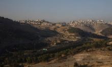 """غرينبلات: ليترافق الضمّ مع تخصيص أراض لـ""""دولة فلسطينية"""""""
