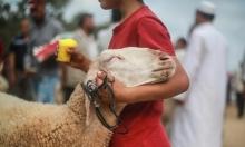 """عيد الأضحى في غزة: أسواق """"خالية"""" وقدرة شرائيّة ضعيفة"""