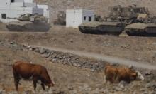 """تقرير: عناصر """"خلية الجولان"""" """"سكان محليون تمشوا على الحدود"""""""