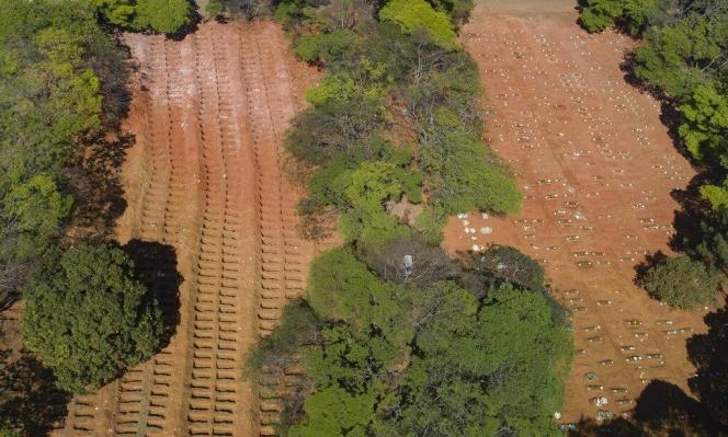 إزالة 1600 كيلومتر مربع من أحراج الأمازون في تموز