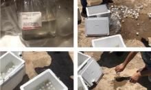 """مصادرة شحنة أدوية """"إسرائيلية المنشأ"""" في مطار بغداد الدولي"""