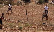 اعتداءات وانتهاكات للمستوطنين في مسافر يطا ونابلس