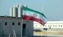 مدير الوكالة الدولية للطاقة الذرية إلى إيران لبحث الخلافات