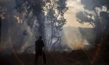 العمادي يصل إلى غزة وتواصل إطلاق البالونات الحارقة