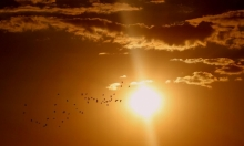 """الأمم المتحدة: درجات الحرارة ستبقى مرتفعة في 2020 رغم ظاهرة """"نينيا"""""""