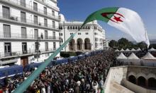 الجزائر: الحكومة تصادق على مشروع الدستور قبل عرضه على البرلمان