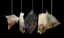 #حرامي_الشاي: هل سيستولي أيضًا على الأسماك الموريتانيّة؟