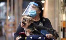 الصحة الإسرائيلية: نحو 4 آلاف إصابة بكورونا والوفيات ترتفع لـ1054