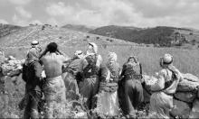 72 عاما على النكبة: معارك في النقب وسيناء (30/2)