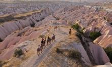 الجِمال في منطقة كبادوكيا التركية