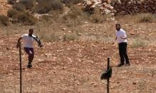 مستوطنون برفقة جيش الاحتلال يعتدون على ممتلكات قرية قصرة