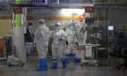 شفاء مصابين بحالة خطيرة بكورونا بعد تلقي علاج تجريبي بالخلايا البشرية