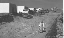 الصهيونية والحرب البيولوجية: تسميم الآبار ونشر الوباء