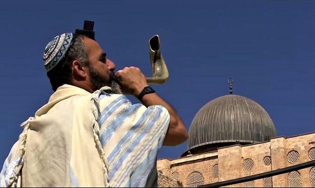 تقسيم الأقصى... توفيق بين الخلافات اليهوديّة على القدسيّة
