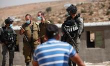 اعتقالات بالضفة والقدس ومستوطنون يسرقون زيتون سبسطية