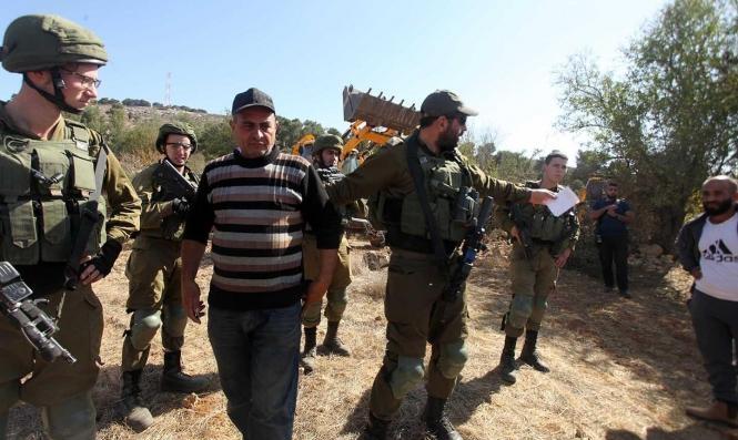 مستوطنون يقطعون 100 شجرة زيتون والاحتلال يسيطر على عشرات الدونمات