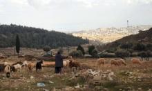 """الخارجية الفلسطينية: البناء الاستيطاني الجديد """"ضربة قاضية لحلّ الدولتين"""""""
